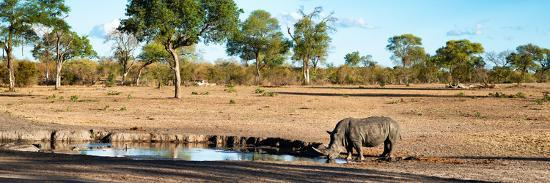 philippe-hugonnard-awesome-south-africa-collection-panoramic-savannah-landscape-with-rhino