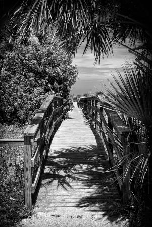 philippe-hugonnard-boardwalk-on-the-beach-florida-united-states