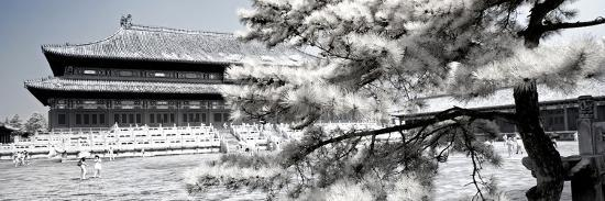 philippe-hugonnard-china-10mkm2-collection-another-look-beijing-temple