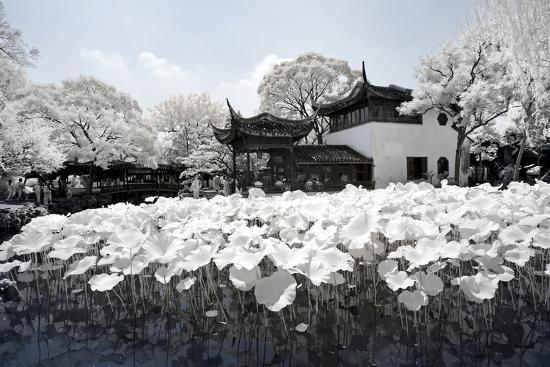 philippe-hugonnard-china-10mkm2-collection-another-look-lotus-lake