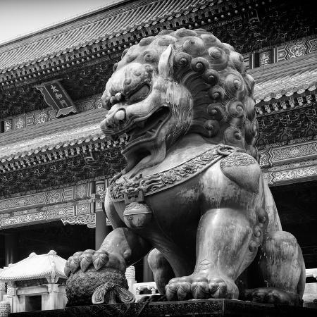philippe-hugonnard-china-10mkm2-collection-bronze-chinese-lion-in-forbidden-city