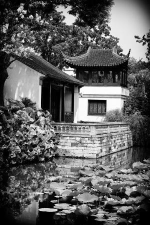 philippe-hugonnard-china-10mkm2-collection-chinese-garden