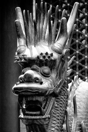 philippe-hugonnard-china-10mkm2-collection-detail-of-dragon