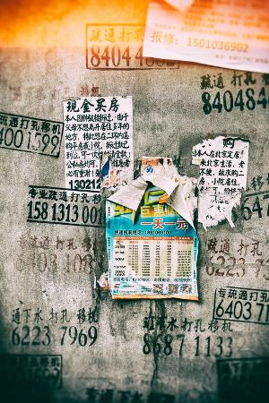 philippe-hugonnard-china-10mkm2-collection-instants-of-series-wild-postings