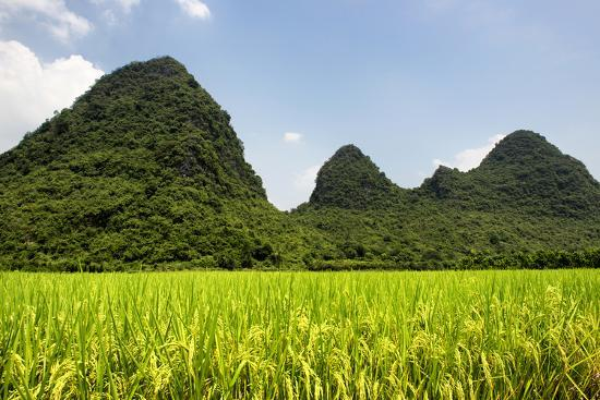 philippe-hugonnard-china-10mkm2-collection-karst-moutains-in-yangshuo