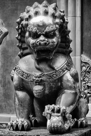philippe-hugonnard-china-10mkm2-collection-lion-statue-forbidden-city