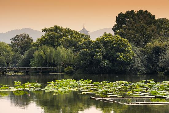 philippe-hugonnard-china-10mkm2-collection-lotus-lake