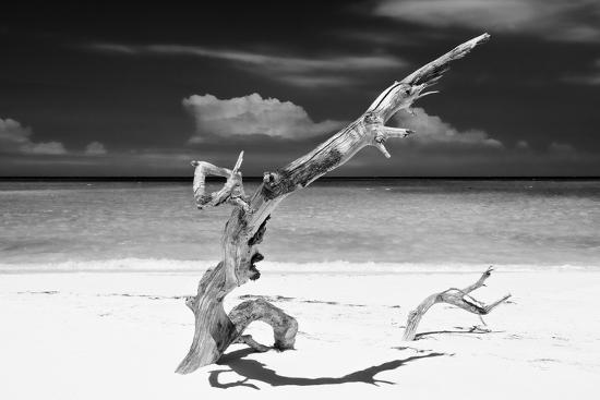 philippe-hugonnard-cuba-fuerte-collection-b-w-trees-and-white-sand-viii