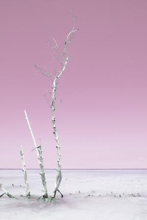 philippe-hugonnard-cuba-fuerte-collection-ocean-nature-pastel-pink