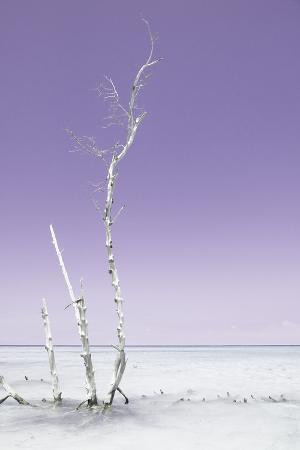 philippe-hugonnard-cuba-fuerte-collection-ocean-nature-pastel-purple