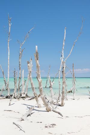 philippe-hugonnard-cuba-fuerte-collection-ocean-wild-nature-iii