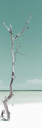 philippe-hugonnard-cuba-fuerte-collection-panoramic-solitary-tree-pastel-coral-green