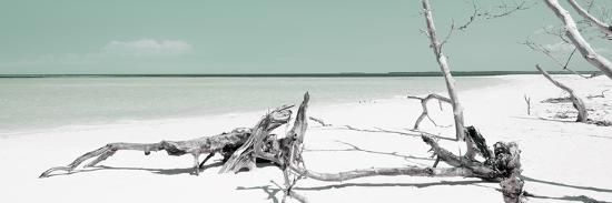 philippe-hugonnard-cuba-fuerte-collection-panoramic-wild-green-lagoon