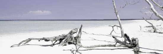 philippe-hugonnard-cuba-fuerte-collection-panoramic-wild-purple-lagoon