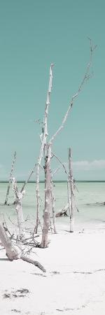 philippe-hugonnard-cuba-fuerte-collection-panoramic-wild-white-sand-beach-ii-pastel-turquoise