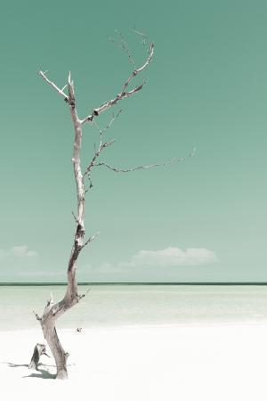 philippe-hugonnard-cuba-fuerte-collection-solitary-tree-pastel-coral-green