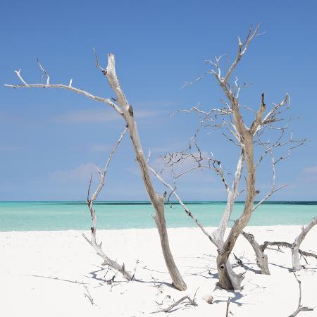 philippe-hugonnard-cuba-fuerte-collection-sq-blue-stillness