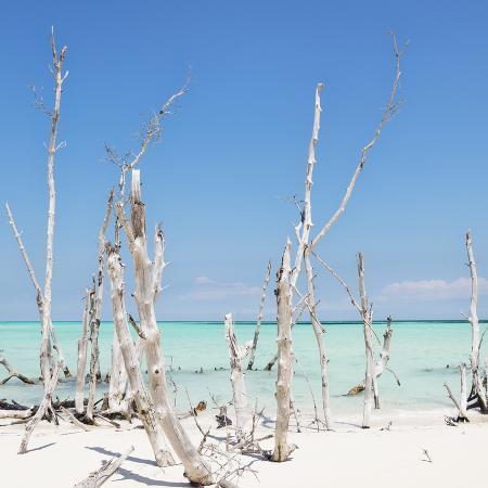 philippe-hugonnard-cuba-fuerte-collection-sq-ocean-wild-nature