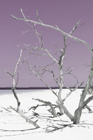 philippe-hugonnard-cuba-fuerte-collection-tropical-beach-nature-ii-pastel-purple