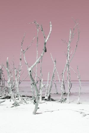 philippe-hugonnard-cuba-fuerte-collection-wild-white-sand-beach-ii-pastel-pink