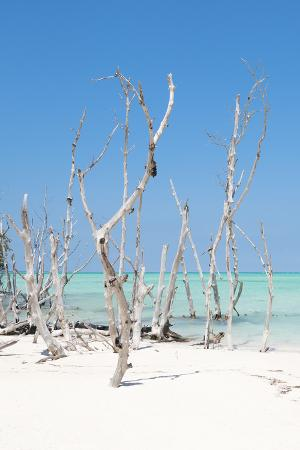 philippe-hugonnard-cuba-fuerte-collection-wild-white-sand-beach-ii
