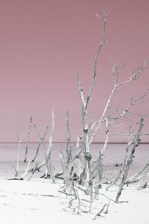 philippe-hugonnard-cuba-fuerte-collection-wild-white-sand-beach-iii-pastel-pink
