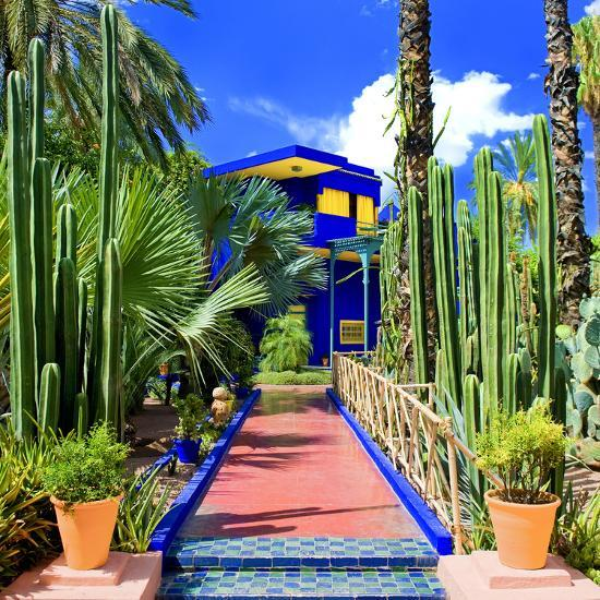 jardin majorelle marrakech morocco north africa africa photographic print by philippe. Black Bedroom Furniture Sets. Home Design Ideas