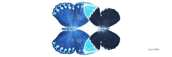 philippe-hugonnard-miss-butterfly-duo-heboformo-pan-x-ray-white-edition