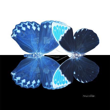 philippe-hugonnard-miss-butterfly-duo-heboformo-sq-x-ray-b-w-edition