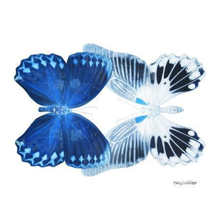 philippe-hugonnard-miss-butterfly-duo-memhowqua-sq-x-ray-white-edition