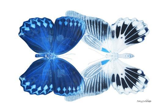 philippe-hugonnard-miss-butterfly-duo-memhowqua-x-ray-white-edition