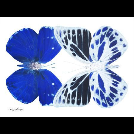 philippe-hugonnard-miss-butterfly-duo-priopomia-sq-x-ray-b-w-edition