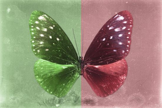 philippe-hugonnard-miss-butterfly-euploea-green-red