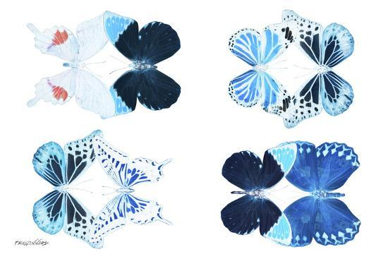 philippe-hugonnard-miss-butterfly-x-ray-duo-white-ii