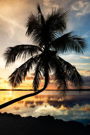 philippe-hugonnard-palm-paradise-at-sunset-florida-usa