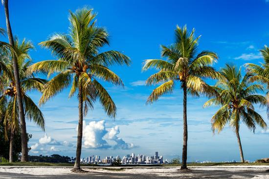philippe-hugonnard-palm-trees-overlooking-downtown-miami-florida