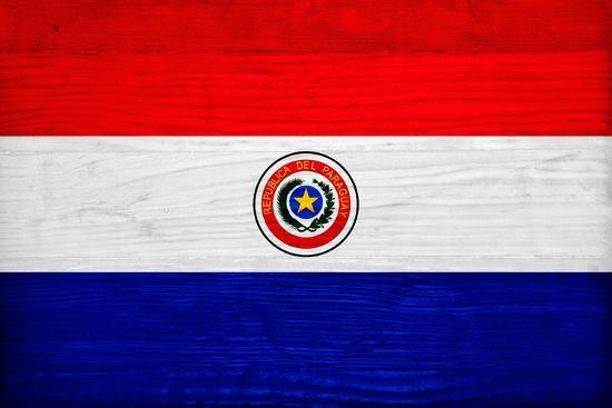 philippe-hugonnard-paraguay-flag-design-with-wood-patterning-flags-of-the-world-series