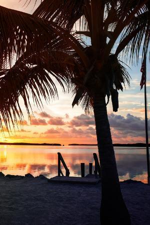 philippe-hugonnard-silhouette-at-sunset-florida