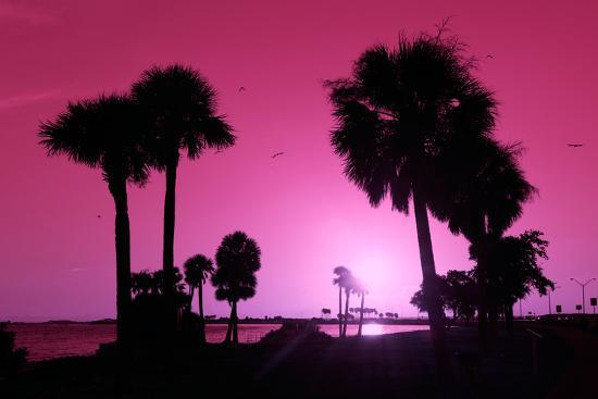 philippe-hugonnard-silhouette-palm-trees-at-sunset