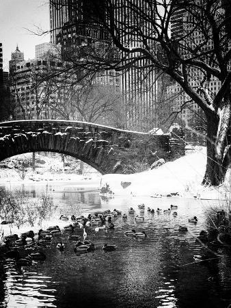 philippe-hugonnard-the-gapstow-bridge-of-central-park-in-winter-manhattan-in-new-york-city
