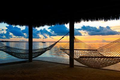 gulf hammock chat Phoenix west ~ orange beach condo rentals by southern looking for the ideal beach getaway with family or friends then look no further than phoenix west, which overlooks the powder white shoreline of the gulf of mexico.