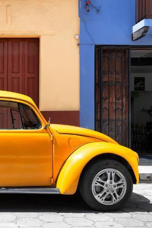 philippe-hugonnard-viva-mexico-collection-the-dark-yellow-beetle