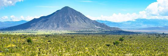 philippe-hugonnard-viva-mexico-panoramic-collection-mexican-desert