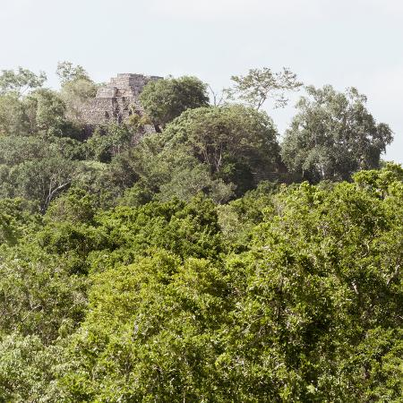 philippe-hugonnard-viva-mexico-square-collection-ancient-maya-city-within-the-jungle-calakmul-iii