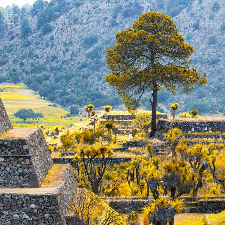 philippe-hugonnard-viva-mexico-square-collection-cantona-archaeological-ruins-ii-puebla