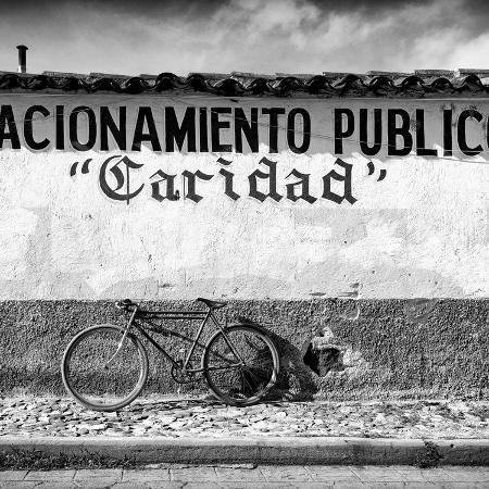 philippe-hugonnard-viva-mexico-square-collection-caridad-bike