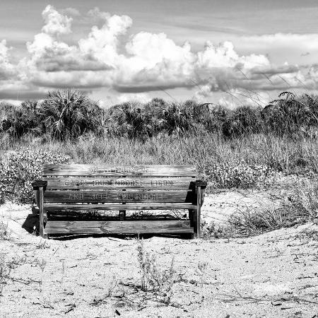 philippe-hugonnard-wooden-bench-overlooking-a-florida-wild-beach