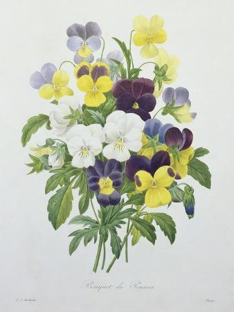 pierre-joseph-redoute-bouquet-of-pansies-engraved-by-victor-from-choix-des-plus-belles-fleurs-1827