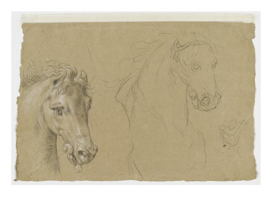 pierre-mignard-etudes-pour-la-tete-d-un-cheval