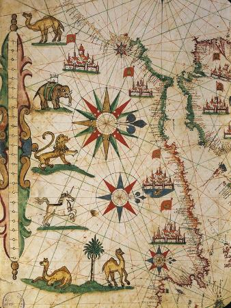 pietro-giovanni-prunus-nautical-chart-of-northern-africa-with-depiction-of-animals-and-wind-rose